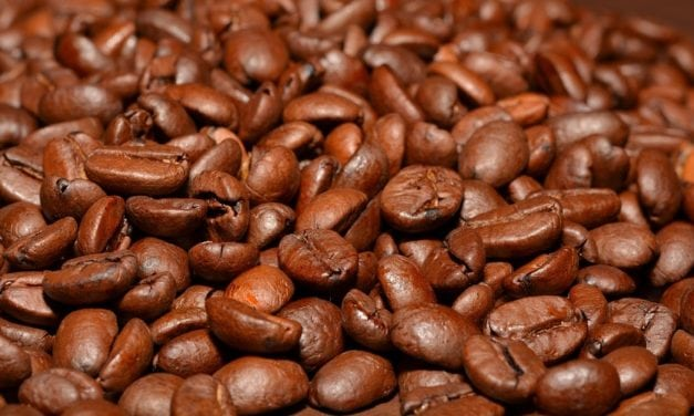 Cool Beans: Interesting Things You Didn't Know About Your Coffee Beans